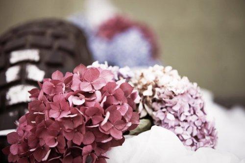Photographe mariage - Belairphotographie - photo 2