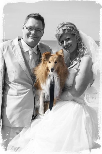 Photographe mariage - stephane geeraert - photo 30