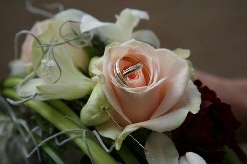 Photographe mariage - PHOTOGRAPHE - photo 125