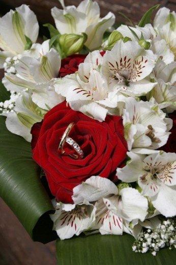 Photographe mariage - PHOTOGRAPHE - photo 120
