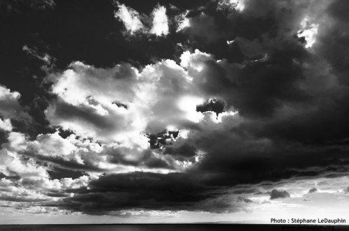 Photographe - Stéphane LeDauphin - photo 7