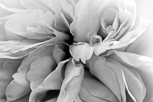Photographe mariage - Yvonne Allanic Photographe - photo 30