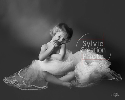 Photographe mariage - Sylvie Création Photo - photo 50