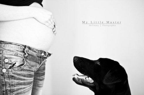 Photographe mariage - MrTimmy - photo 25