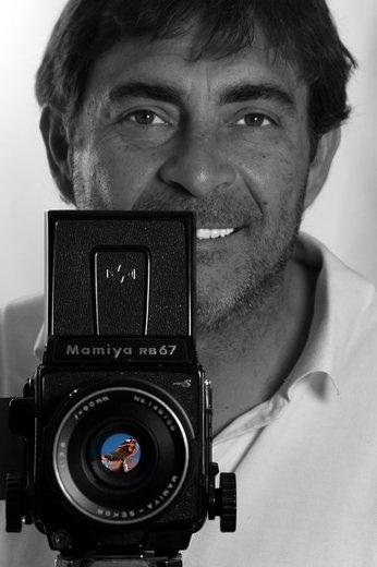 Photographe - Photographe-Auteur David Reus© - photo 19