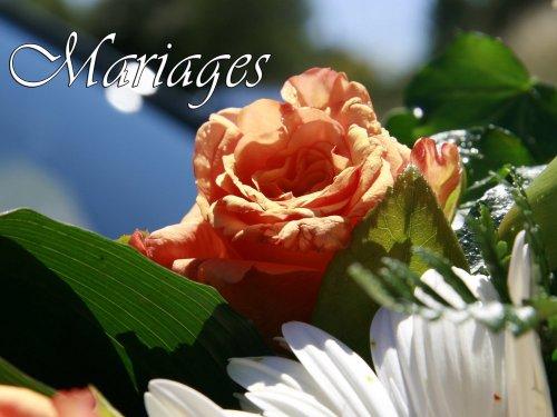Photographe mariage - FOTOGRAFIK.ELSA - photo 1