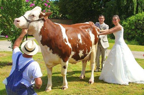 Photographe mariage - Piantino guillaume - photo 39