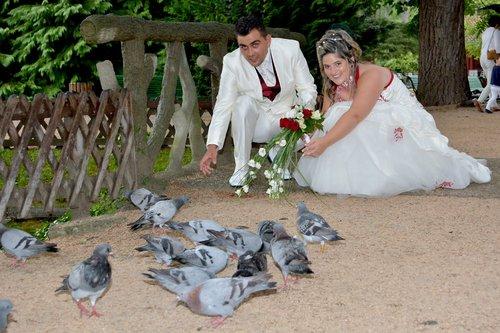Photographe mariage - www.graphicland.user.fr - photo 16
