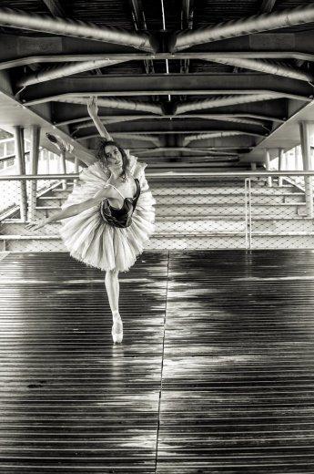Photographe - David Elofer Photographe © - photo 69