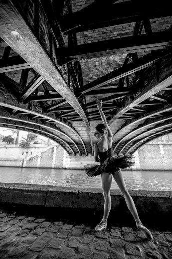 Photographe - David Elofer Photographe © - photo 37