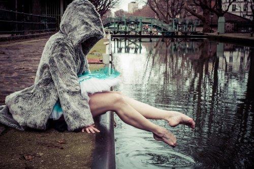 Photographe - David Elofer Photographe © - photo 18