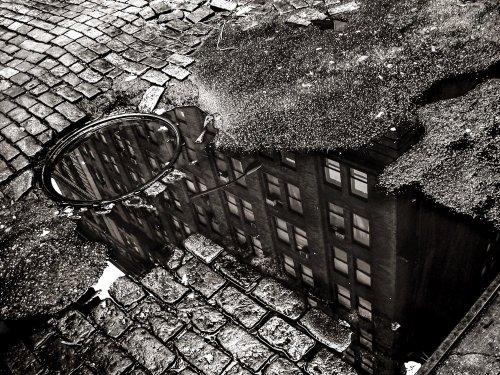Photographe - David Elofer Photographe © - photo 83