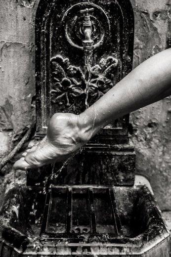Photographe - David Elofer Photographe © - photo 45