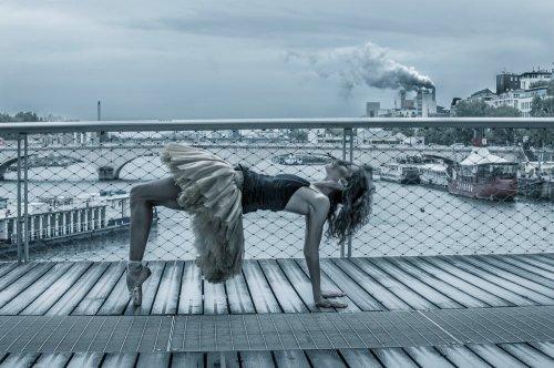 Photographe - David Elofer Photographe © - photo 70