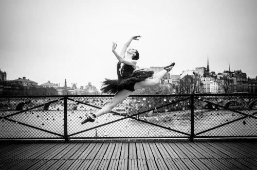 Photographe - David Elofer Photographe © - photo 11