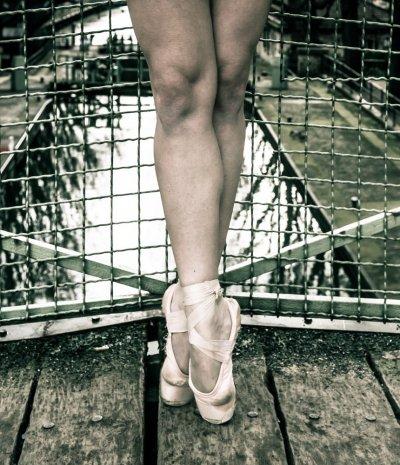 Photographe - David Elofer Photographe © - photo 14
