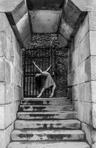Photographe - David Elofer Photographe © - photo 23