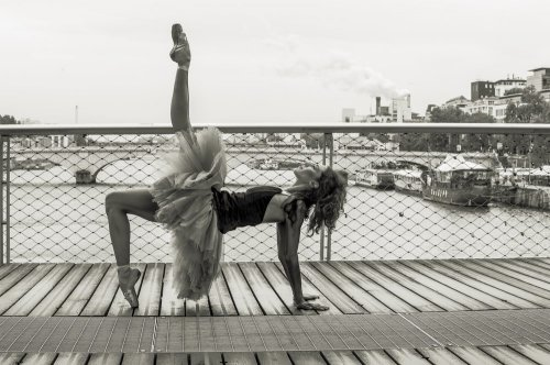 Photographe - David Elofer Photographe © - photo 71