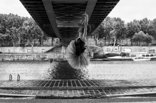 Photographe - David Elofer Photographe © - photo 78