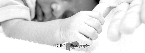 Photographe - DIBOU Photography - photo 3
