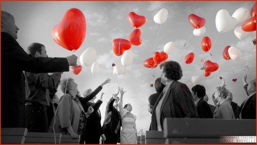 Photographe mariage - IMAGE NOUVELLE - photo 11