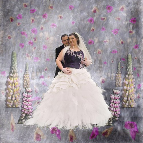 Photographe mariage - Studio Willy Proust - photo 16