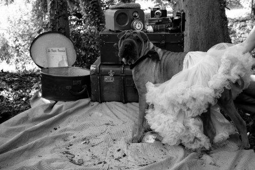 Photographe mariage - christelartphotograhy - photo 76