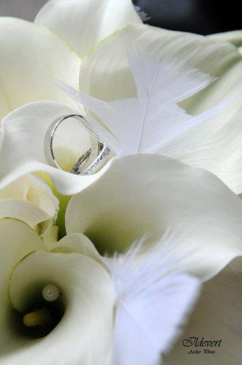 Photographe mariage - Ildevert atelier photo - photo 4