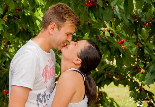 Photographe mariage - Mélanie ALAMINOS - Photographe - photo 2