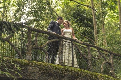 Photographe mariage - ST Photo Art - photo 50
