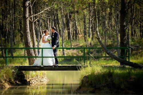 Photographe mariage - Sylvain Dubois Photographe - photo 12