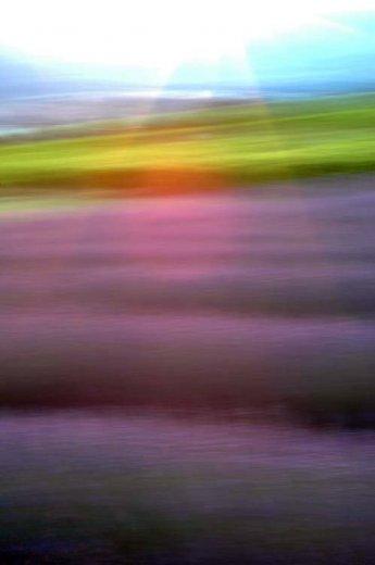 Photographe - Sylvain Mestre - photo 52