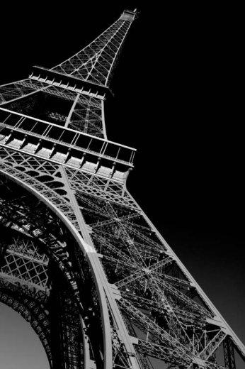 Photographe - Sylvain Mestre - photo 41