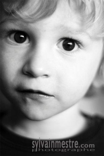 Photographe - Sylvain Mestre - photo 66