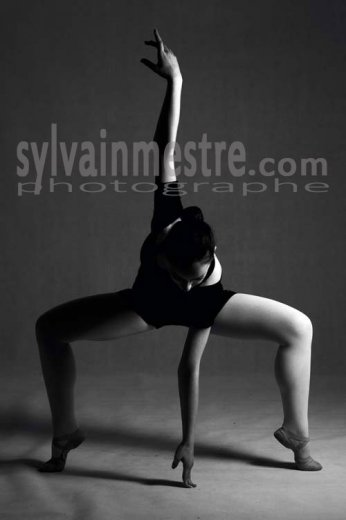 Photographe - Sylvain Mestre - photo 12
