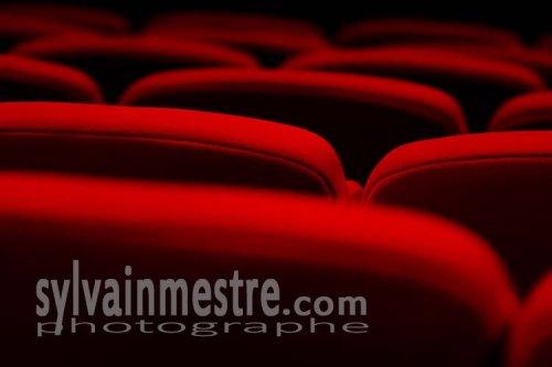 Photographe - Sylvain Mestre - photo 35