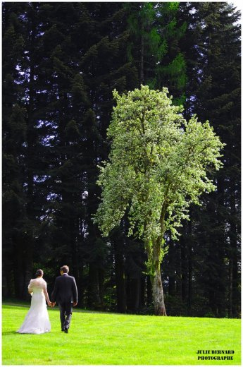 Photographe mariage - Julie BERNARD - photo 59