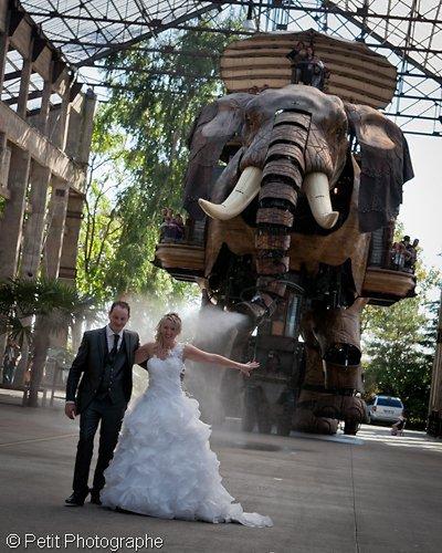 Photographe mariage - Petit Photographe - photo 47