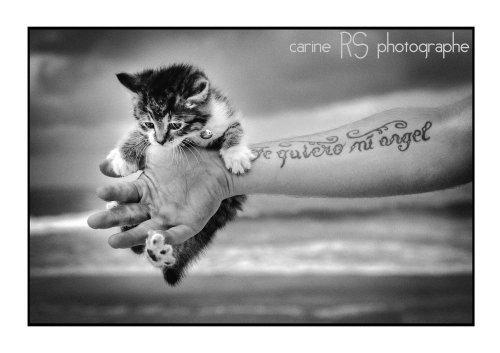 Photographe mariage - Carine RS - photo 16