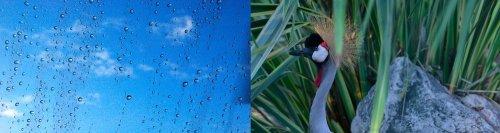 Photographe mariage - Graphiste | Photographe - photo 4