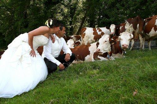 Photographe mariage - PhotoSavoie - photo 73