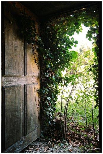 Photographe mariage - Provence Photo - photo 102