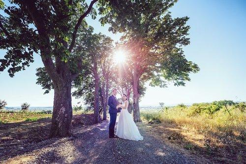 Photographe mariage - Johan Photographe - photo 22