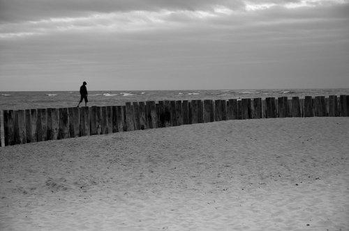 Photographe - CAPDEVIELLE PHOTOGRAPHE - photo 17