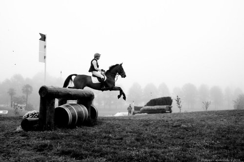 Photographe - CAPDEVIELLE PHOTOGRAPHE - photo 89