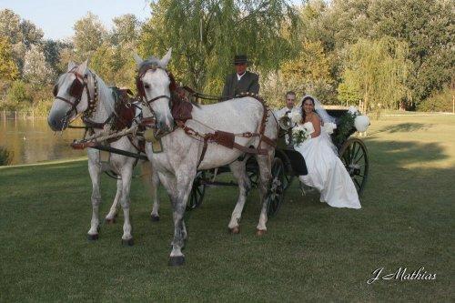 Photographe mariage - Mathias - photo 161