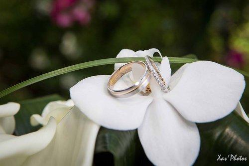 Photographe mariage - Xav' Photos - photo 19