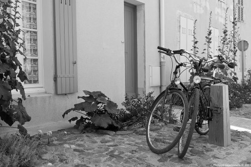 Photographe - CAPDEVIELLE PHOTOGRAPHE - photo 130