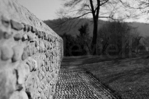 Photographe - CAPDEVIELLE PHOTOGRAPHE - photo 129