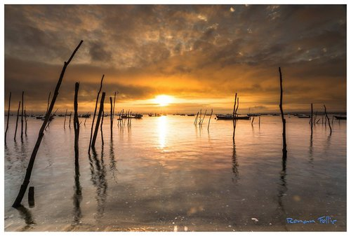 Photographe - Ronan Follic - photo 184